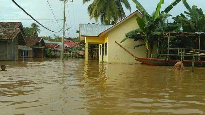 Banjir di Tebo Merendam Rumah Warga, Fasilitas Umum dan Juga Puluhan Hektare Sawah