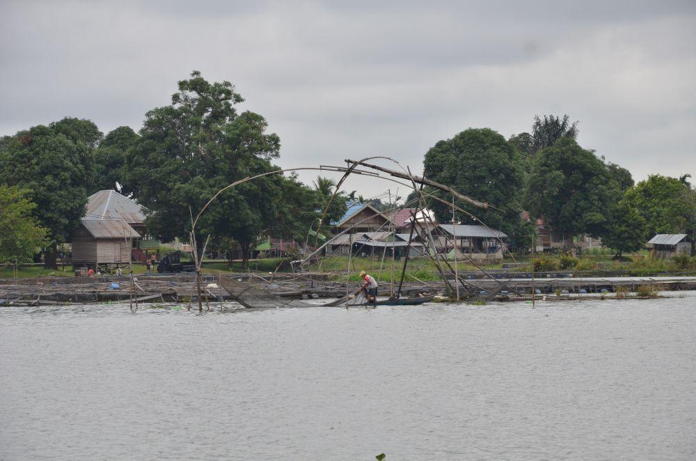 Petani Keramba Ikan di Danau Sipin