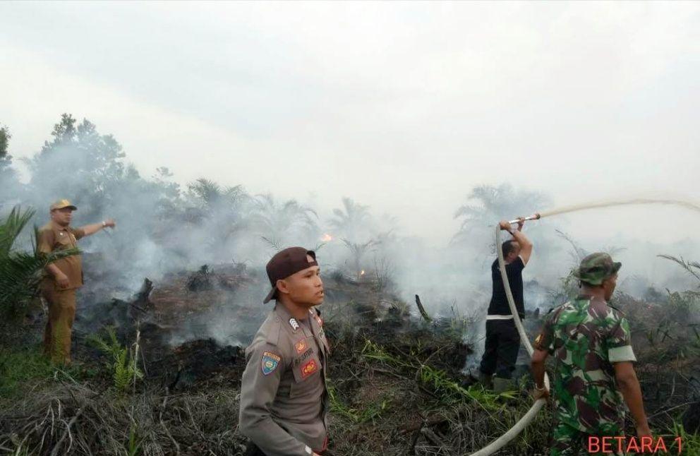 Karhutla Tahun 2018 di Kecamatan Betara, Kabupaten Tanjab Barat