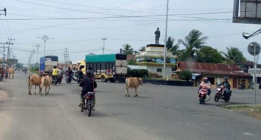 H-7 Idul Fitri Truk Angkutan Barang dilarang Melintas
