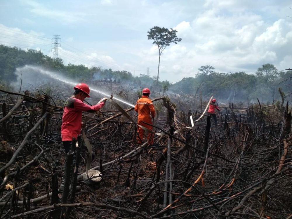 Lahan yang terbakar di Batanghari.