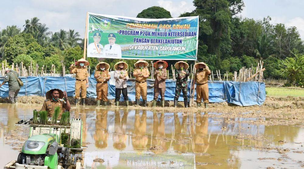 Peluncuran P2DK di areal persawahan kelompok tani Sukajadi di desa Lubuk Resam