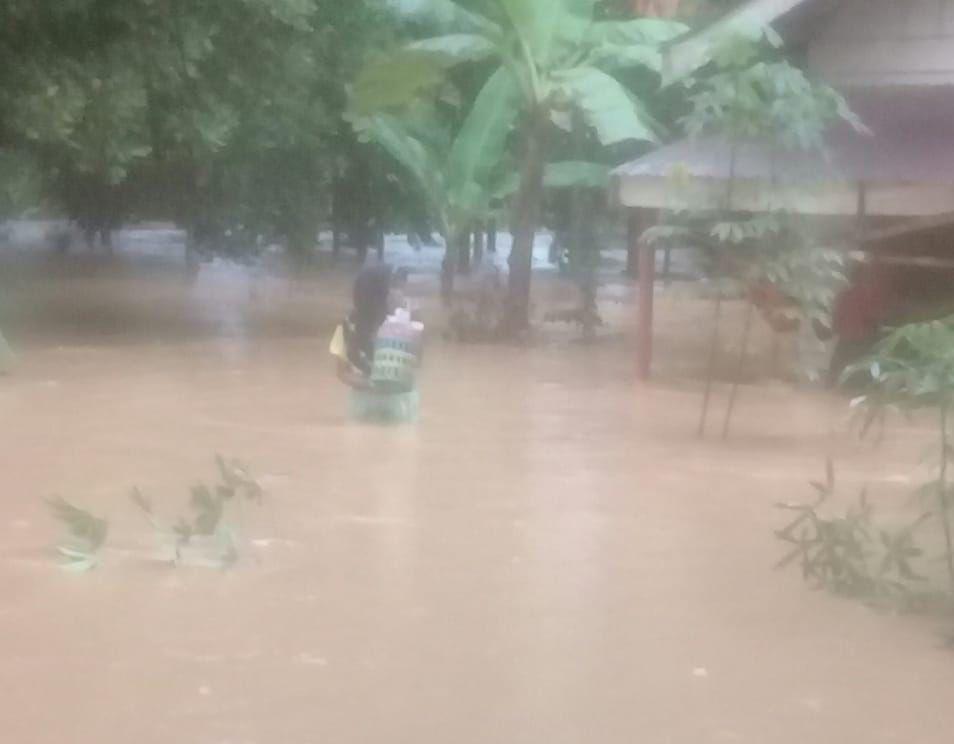 Wilayah Kecamatan Batangasam Tanjabar yang terendam banjir