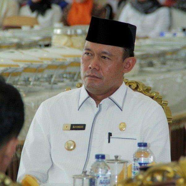 Bupati Tebo, H. Sukandar