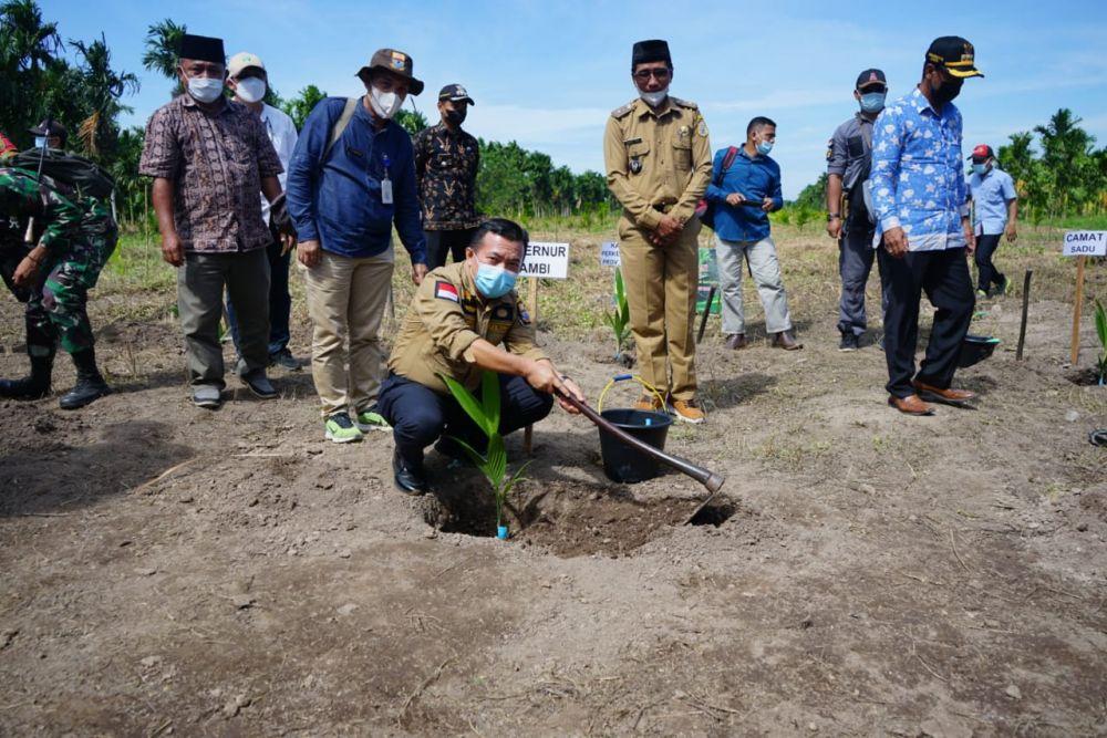 Gubernur Jambi Al Haris Melaksanakan penanaman Komoditi Pinang di Desa Remau Bako Tuo