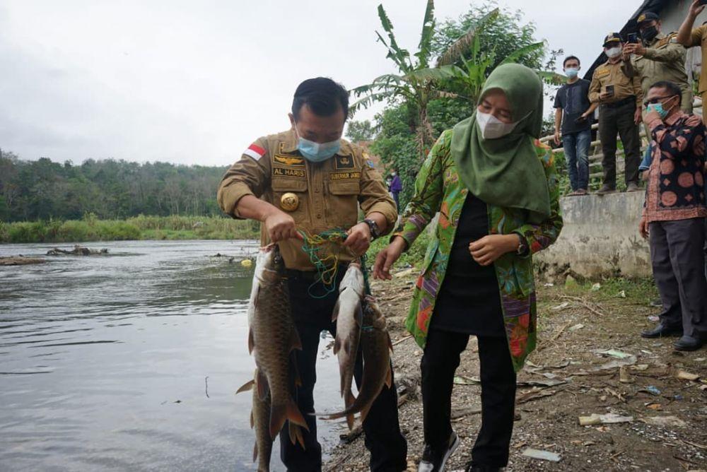 Gubernur Al Haris Ikut Panen Ikan Semah di  lubuk larangan di Desa Pengasi Lama Kecamatan Bukit Kerman Kabupaten Kerinci, Selasa (3/8/2021).